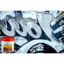 ProfiCleaner Graffiti GEL